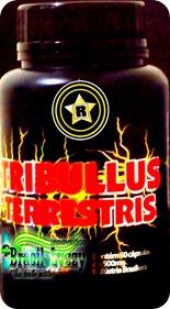 tribulus 03