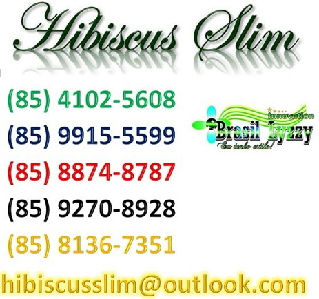 hibiscus slim telefone